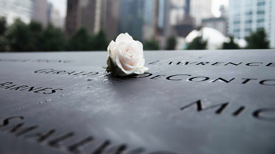 white rose laying on 9/11 memorial in new york city world trade center